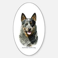 Australian Cattle Dog 9F061D-03 Sticker (Oval)