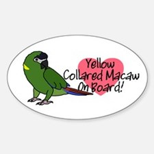 Yellow Collared Macaw On Board Oval Decal