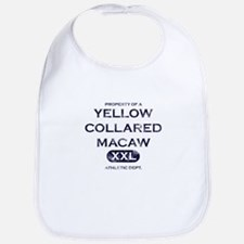 Property of a Yellow Collared Macaw Bib