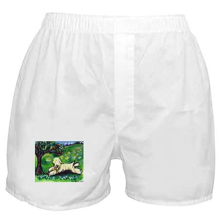 Wheaten Season Summer Boxer Shorts