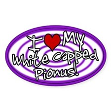Hypno I Love My White Capped Pionus Sticker Purp