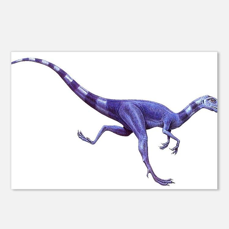 Oviraptor Raptor Dinosaur Postcards (Package of 8)