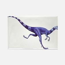 Oviraptor Raptor Dinosaur Rectangle Magnet
