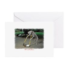 Scoop Notecards Greeting Cards (Pk of 10)