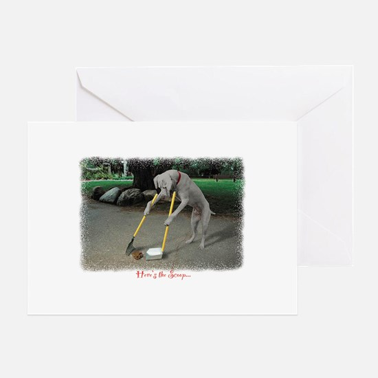 Scoop Notecards Greeting Card