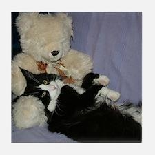 B&W Maine Coon Cat Teddy Boy Tile Coaster