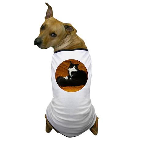 Snug Black & White Maine Coon Dog T-Shirt