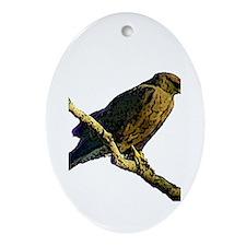 Swainson's hawk - Oval Ornament