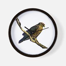 Swainson's hawk - Wall Clock