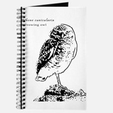Burrowing Owl - B&W - Journal