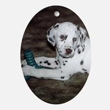 Dalmatian Pup Keepsake (Oval)