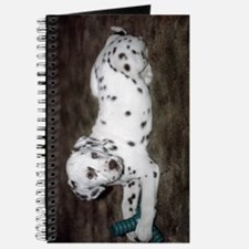 Dalmatian Pup Journal