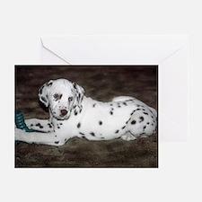 Dalmatian Pup Greeting Cards (Pk of 10)