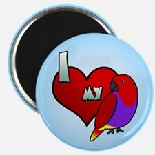 Love Hen Vosmaeri Eclectus Magnet