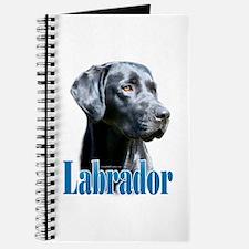 Lab(black) Name Journal
