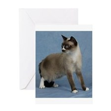 Funny Snowshoe cat Greeting Card