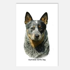 Australian Cattle Dog 9F061D-04 Postcards (Package