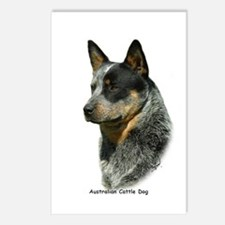 Australian Cattle Dog 9F061D-06 Postcards (Package