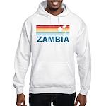 Retro Palm Tree Zambia Hooded Sweatshirt