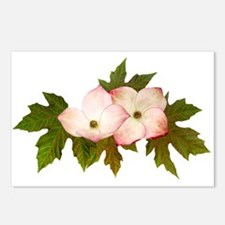 Dogwood Maple Postcards (Package of 8)
