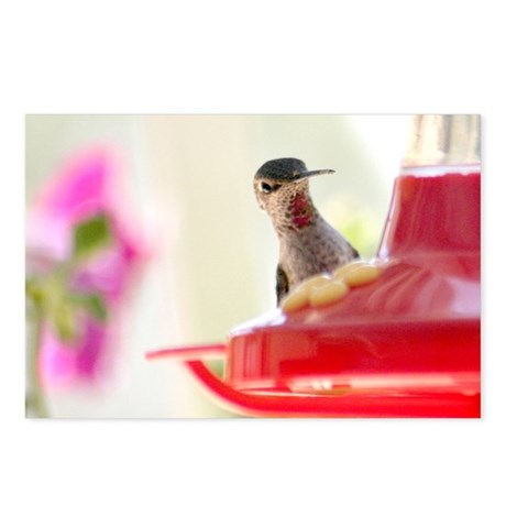 Peep-a-boo Postcards (Package of 8)