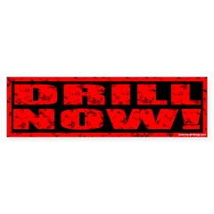Drill Now! Stamped Bumper Bumper Sticker