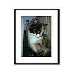 Calico Cat Framed Panel Print