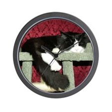 Snoozing B&W Maine Coon Cat Wall Clock