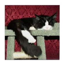 Snoozing B&W Maine Coon Cat Tile Coaster
