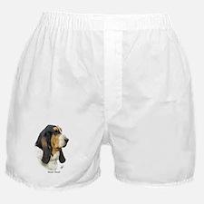 Basset Hound 9P013D-41 Boxer Shorts