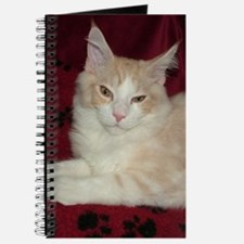 'Pink' Maine Coon Cat Comfy Journal