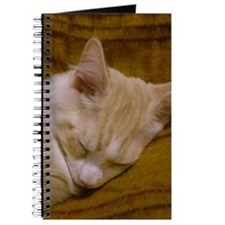 Tired 'Pink' Maine Coon Cat Journal
