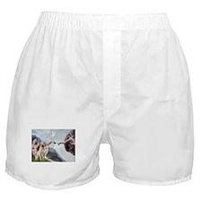 Creation & Yellow Lab Boxer Shorts