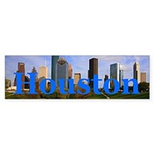 Houston Bumper Car Sticker