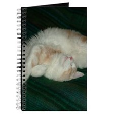 'Pink' Maine Coon Cat Elegant (Not!) Journal