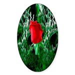 One Red Rose Oval Sticker (10 pk)