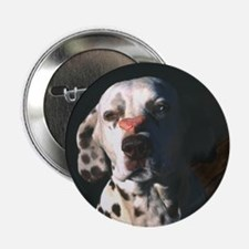 Dalmatian Lonely Heart Button