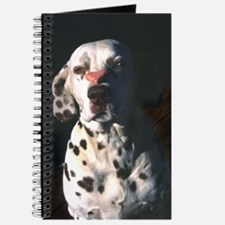 Dalmatian Lonely Heart Journal