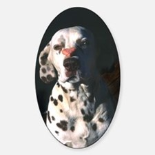 Dalmatian Lonely Heart Oval Decal
