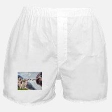 Creation & Yellow Lab Boxer Shorts