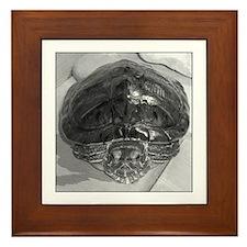 """""""Samus"""" the Turtle Framed Tile"""