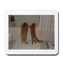 Orange Tabby Cats and Kittens Mousepad