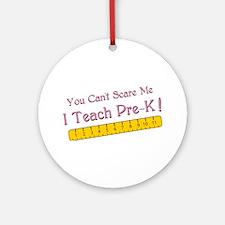 Teacher Pre-k Humor Ornament (Round)