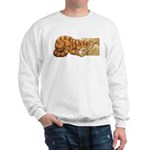 Whiskers in the Jar Sweatshirt
