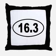 16.3 Throw Pillow