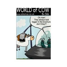 Cow Brochure Rectangle Magnet