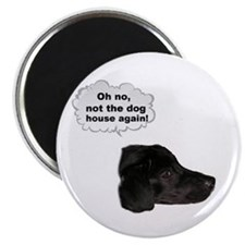 NOT THE DOG HOUSE AGAIN! Magnet