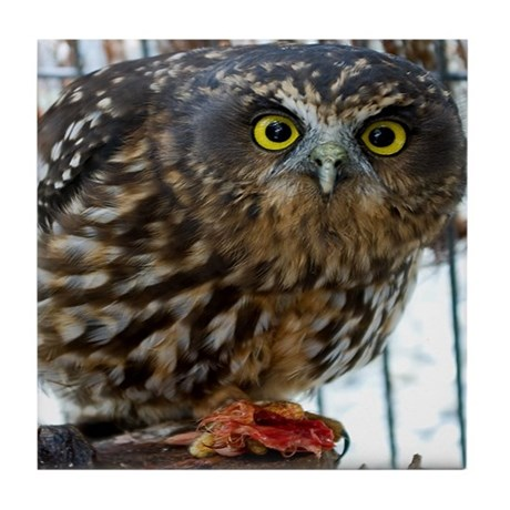 Morepork Owl Tile Coaster
