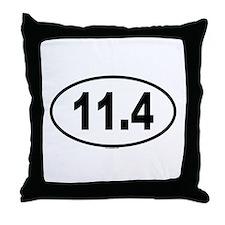 11.4 Throw Pillow
