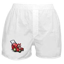 Cool Landscape Boxer Shorts